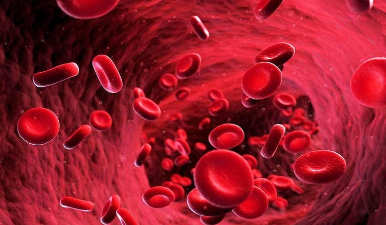 analyse sang vaccinés